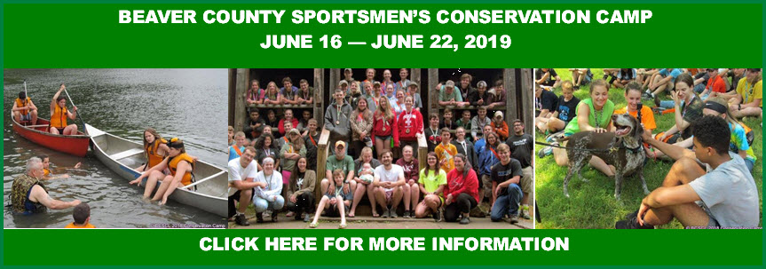 2019 Conservation Camp